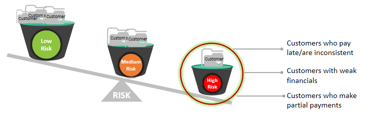 Risk category wise customer distribution