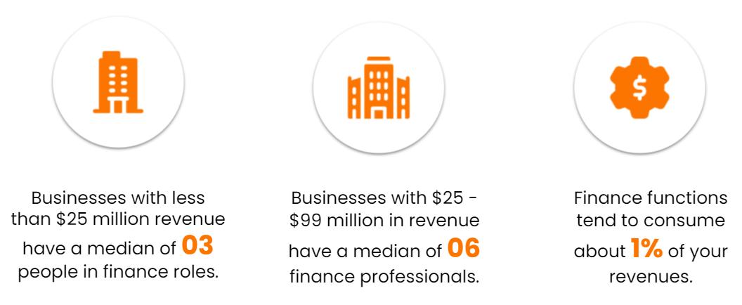Finance team structure stats